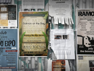 Poster announcement for Salmon at the Bay